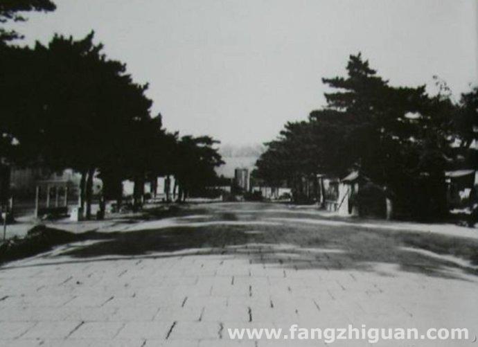 1982年,原新京神社参道。